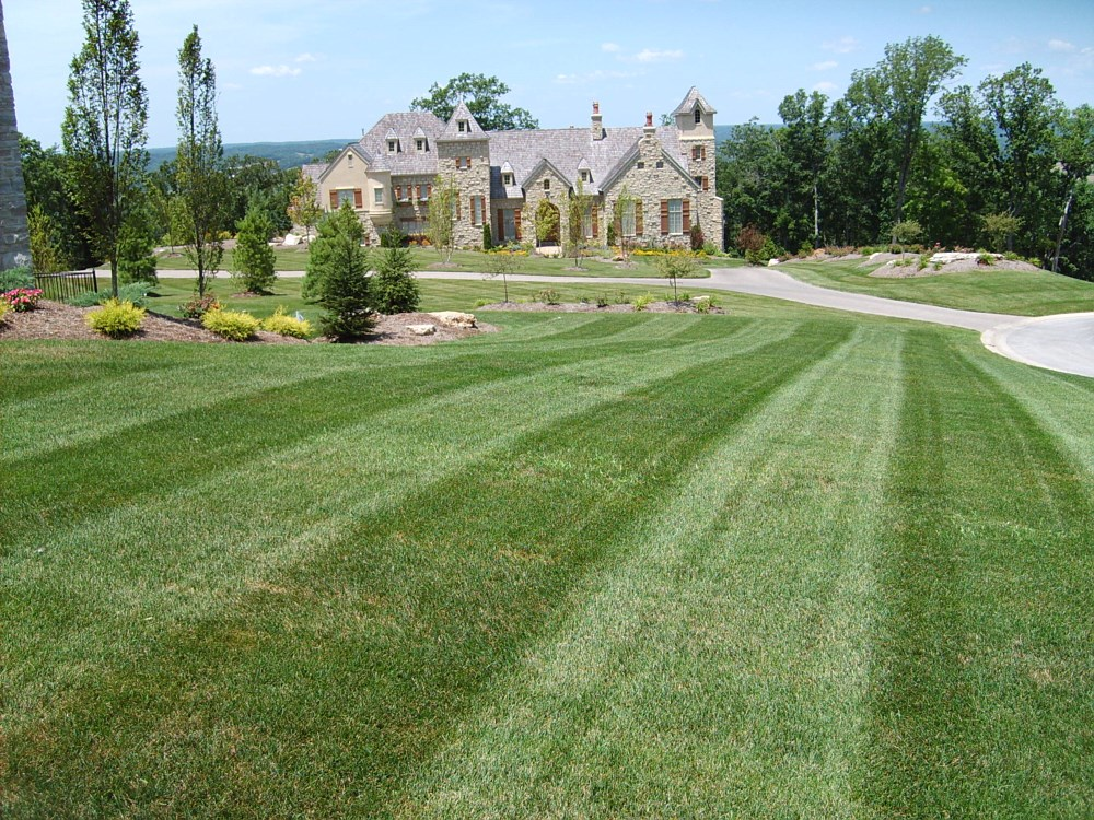 Lawn care maintenance washington missouri mo for Garden care maintenance